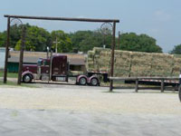 Large load of timothy hay