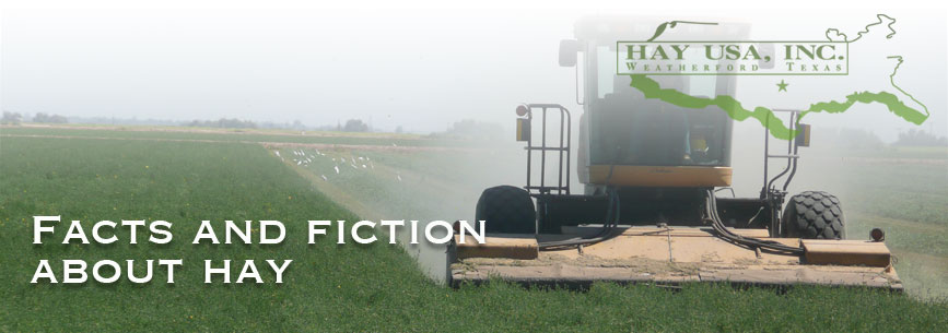 Facts and fiction about hay